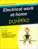 electrical work for Dummies.png